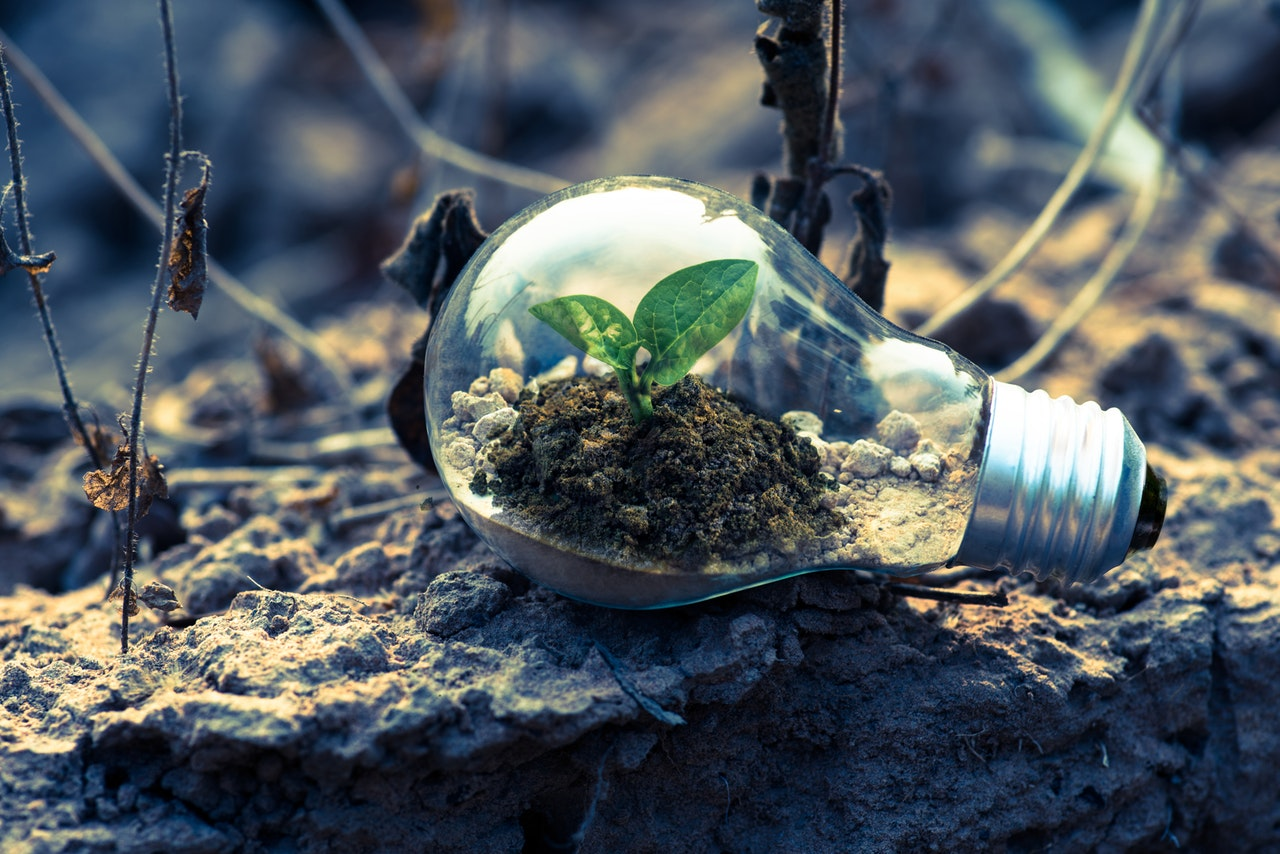 Everything You Need To Know About Green Energy