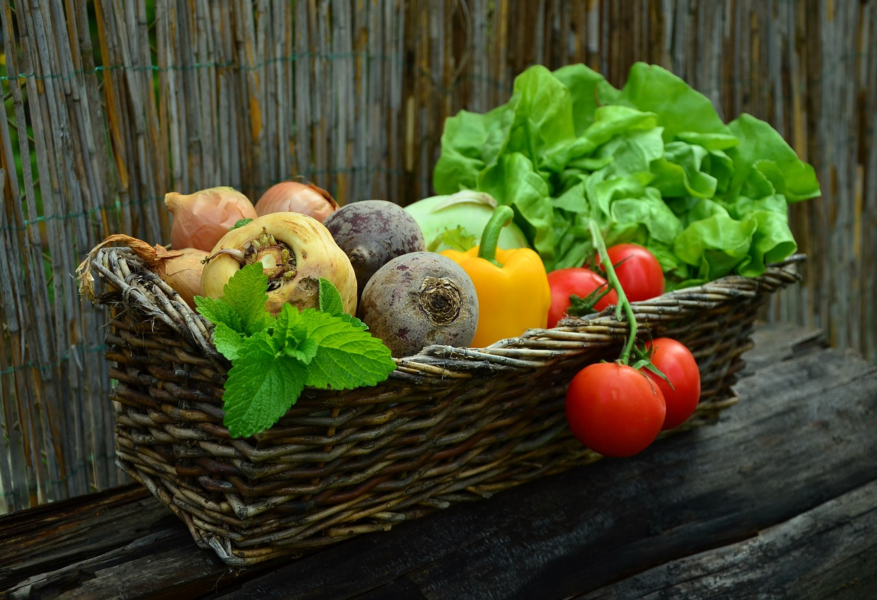 Need Advice For Your Organic Garden? Look No Further Than These Ideas!